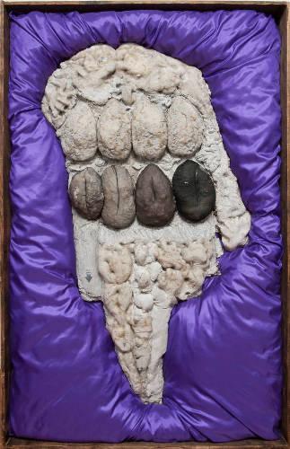 死なないための葬送―荒川修作初期作品展 荒川修作 ≪抗生物質と子音にはさまれたアインシュタイン≫