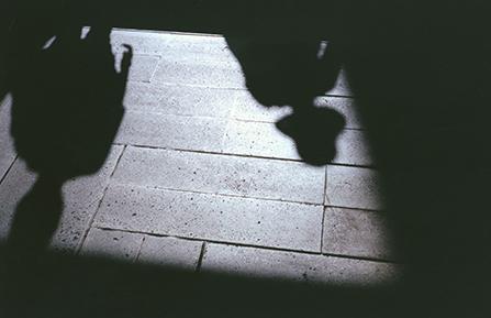 鷹野隆大 「光の欠落が地面に届くとき 距離が奪われ距離が生まれる」